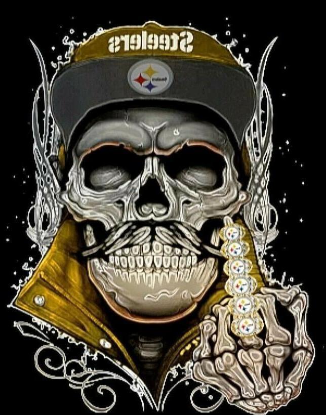 2 pittsburgh steelers six championship rings skull